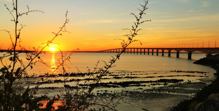 TOP 5 Spots to admire the sunsets on the island of Ré