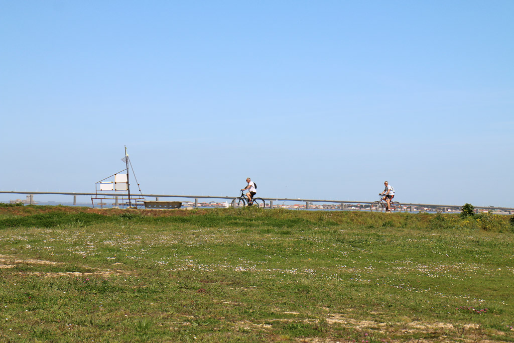Vélo à Saint-Trojan